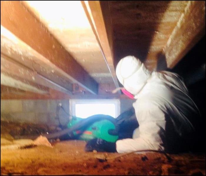 Mold Removal in Tight Crawlspace