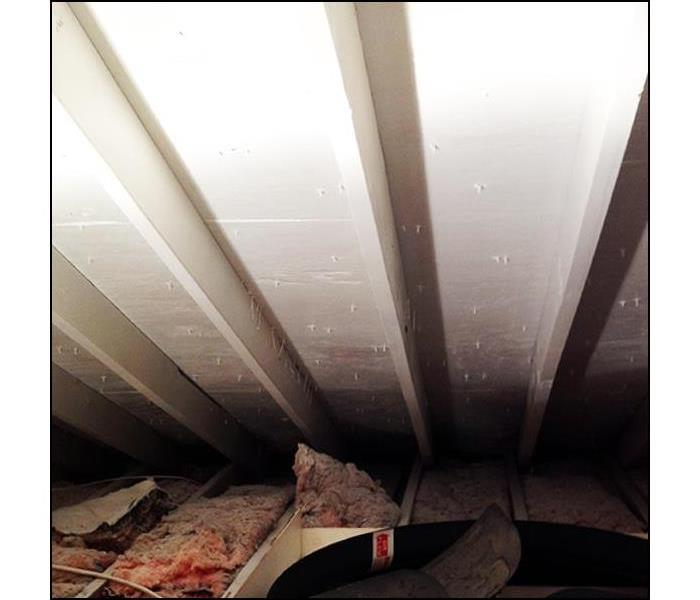Attic Rafter Mold Remediation, in West Milford, NJ