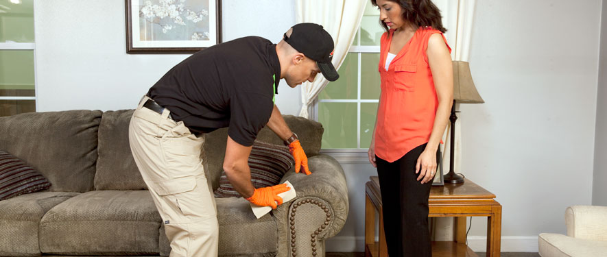 Sparta, NJ carpet upholstery cleaning