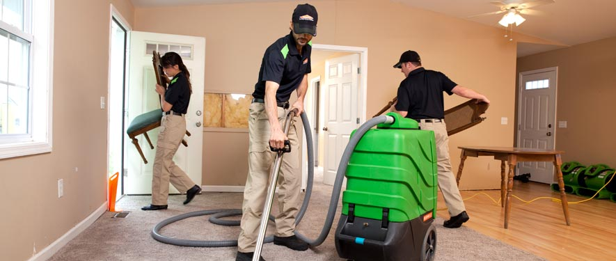 Sparta, NJ cleaning services
